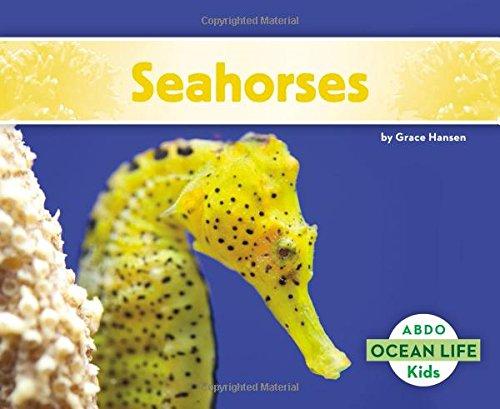 Seahorses (Ocean Life)