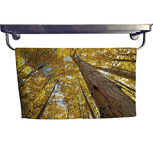 HoBeauty home Quick-Dry Towels,View of Fall Aspen Tree Leaves in Fade Tone Autumn Season Photo Image,Microfiber Towel W 27.5