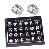 BodyJ4You 24 Pieces Magnetic Fake Plug Lot Fake Gauges, Magnetic Logo 2G Gauges Look (12 Pairs)