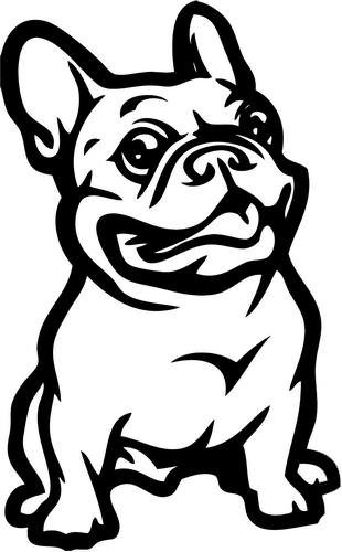 french bulldog pet - 5