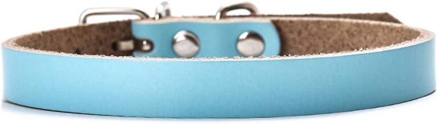 GUOCU 5 Pieza Collar Cuero PU Polipiel Espina Pinchos Punky Ajustable para Perro,Cielo Azul (5 Piezas),XL