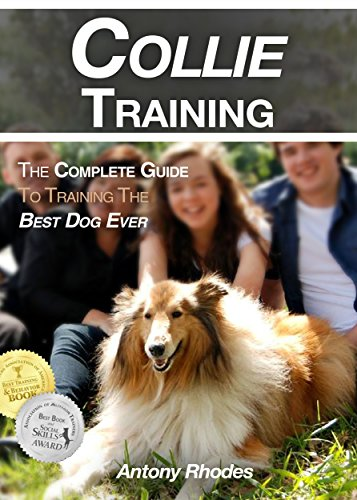 Collie Training: The Complete Guide To Training the Best Dog Ever