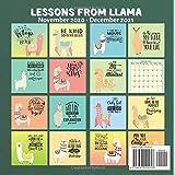 Lessons From Llama Calendar 2021: November 2020
