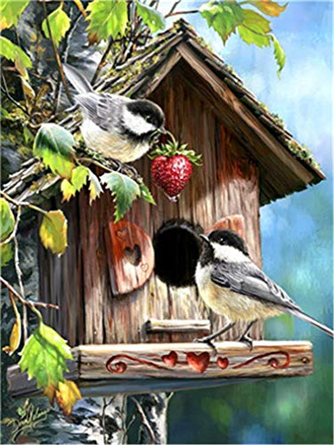 (YEESAM ART DIY Paint by Numbers for Adults Beginner Kids, Birds Love Home Strawberry 16x20 inch Linen Canvas Acrylic Stress Less Number Painting Gifts (Birds, with Frame))