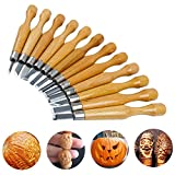 Wood Carving Set, KWOW SK7 Carbon Steel Handle Wood Carving Knife Tools, Professional Sculpture Sculpting Woodworking Crafting Chisel for DIY Art Craft Clay Carpentry Beginners Amateur (12 Set)