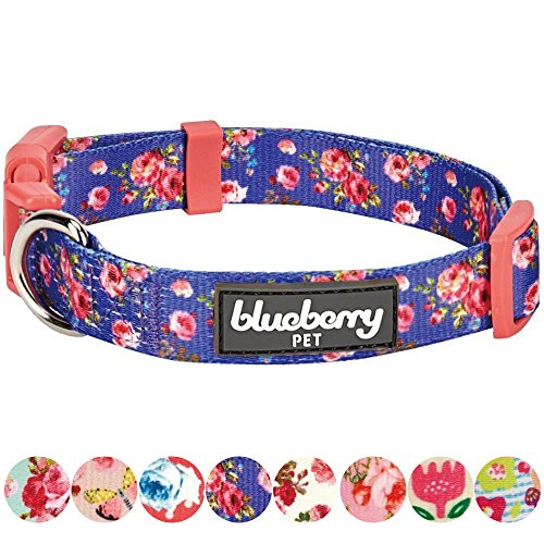 erns Spring Scent Inspired Rose Print Irish Blue Dog Collar, Small, Neck 12