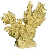 Deep Blue Professional ADB80049 Branch Coral for Aquarium, 3.25 by 2.5 by 2.75-Inch