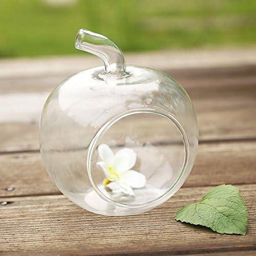 ZHUOTUO Apple florero de cristal deseo de la botella botellas de ...