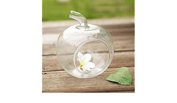 ZHUOTUO Apple florero de cristal deseo de la botella botellas de decoración para el hogar: Amazon.es: Hogar