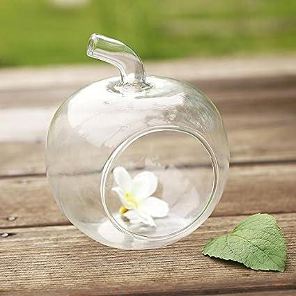 ZHUOTUO Apple florero de cristal deseo de la botella botellas de decoración para el hogar