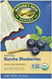 Nature's Path Frosted Toaster Pastry - Blueberry - 11 oz - 6 ct