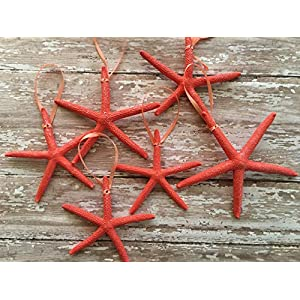 Caribbean Coral Starfish Christmas Tree Ornaments, 6 26