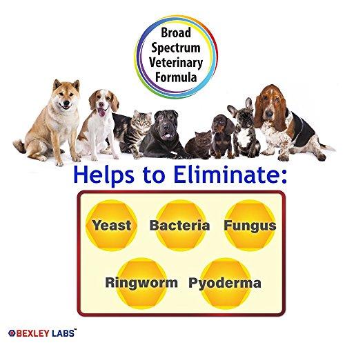 Chlorhexidine For Dogs Ears