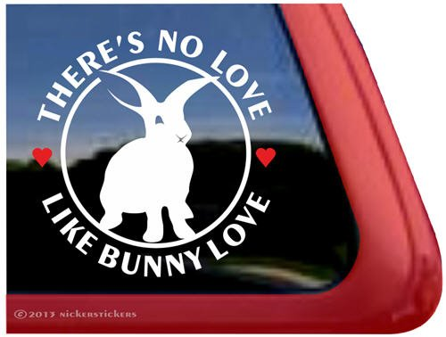 There's No Love Like Bunny Love ~ Cute Bunny Rabbit High Quality Vinyl Window Decal
