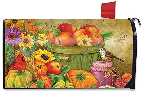 Briarwood Lane Abundant Blessings Floral Fall Mailbox Cover Apples Gourds Sunflowers Standard