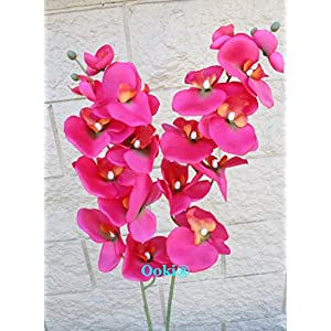 Beautiful 33″ Colorful Phalaenopsis Orchid Artificial Branches Flowers Stems for Home Office Wedding Decoration NOT Silk Butterfly Arrangement Centerpiece (2, Redish Pink)