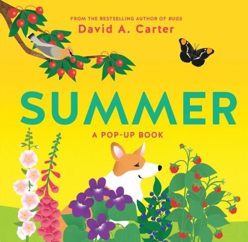 Download Summer: A Pop-Up Book (Seasons Pop-up) pdf epub