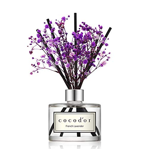 Cocod'or Preserved Real Flower Diffuser/French Lavender/6.7oz/Diffuser Oil