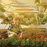 LED Grow Light for Indoor Plants,Sun-Like Full
