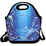 Best Picnic Plus Lunch Boxes - HOOAL Pisces Travel Picnic Lunch Bag Lunchboxes Outdoor Review