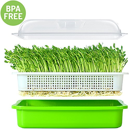 Seed Sprouter Tray BPA Free PP Soil-Free Big Capacity Healthy Wheatgrass Grower 9.84 x 13.4 x 4.72inch with Cover