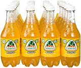 Jarritos Drink, Mango, 16.9 Ounce (Pack of 24)