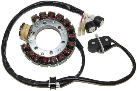 ElectroSport ESG431 Stator Yamaha YFM350