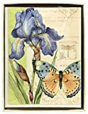C.R. Gibson Boxed Notecards, 10-Count, Eden (CN6-14105) by C.R. Gibson