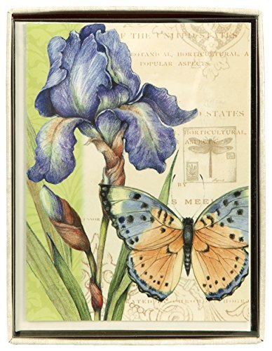 C.R. Gibson Boxed Notecards, 10-Count, Eden (CN6-14105) by C.R. Gibson by C.R. Gibson