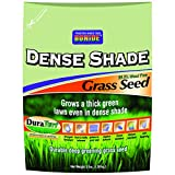 Bonide Shade Grass Seeds