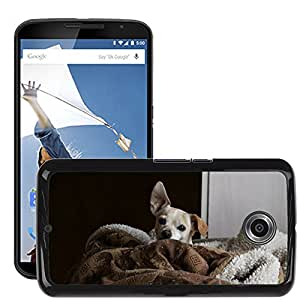 Hot Style Cell Phone PC Hard Case Cover // M00116589 Dog Chihuahua Doggy Pet Small Happy // LG Google Nexus 6