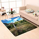 Nalahome Custom carpet Rustic Wooden Sign in Hobbit Land East West Farthing Movie Set New Zealand The Shire Green Brown area rugs for Living Dining Room Bedroom Hallway Office Carpet (6' X 9')