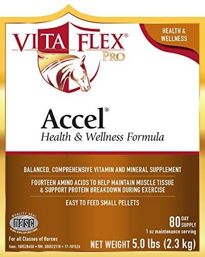 Image of Vita Flex Pro Accel Health & Wellness Formula