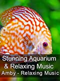 Stunning Aquarium & Relaxing Music - Amby - Relaxing Music