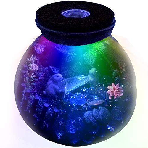 FUNSHOWCASE 5.9 Inch Round Glass Terrarium Container Bowl Pot with LED Light Wood Lid Tabletop Succulent Planter