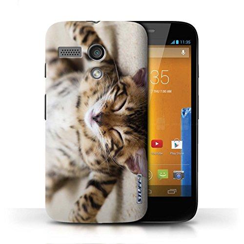 Etui / Coque pour Motorola MOTO G (2013) / Chaton Parasseux conception / Collection de Chatons mignons