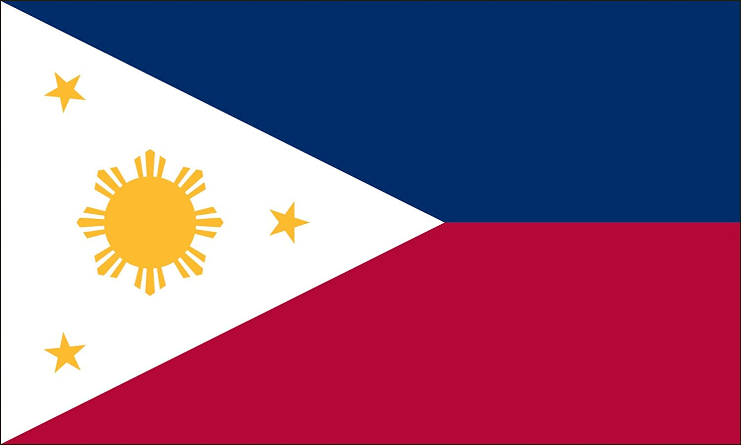 Amazon.com : Valley Forge Flag 4-Foot by 6-Foot Nylon Philippines ...