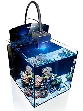Acuario Aqua Medic Blenny Qube Marino: Amazon.es: Productos para mascotas