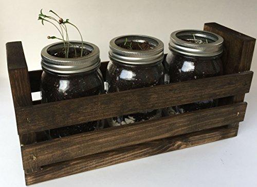 Indoor Herb Garden Kit -Great for Growing an Indoor Herb ...