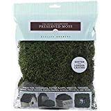 Quality Growers Preserved Sheet Moss, 112.5 Cubic Inch