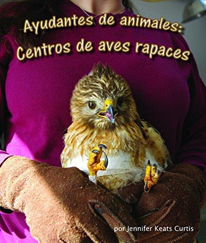 Ayudantes de animales: centros de aves rapaces (Spanish Edition) [Jennifer Keats Curtis] (Tapa Blanda)