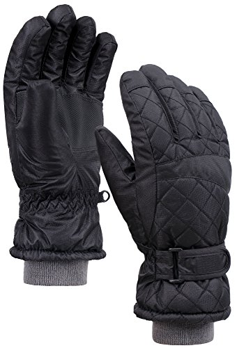 Andorra Women's Waterproof Quilted Thinsulate Lined Insulating Snow Gloves – DiZiSports Store