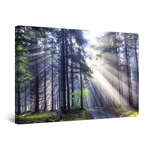 (STARTONIGHT Canvas Wall Art - Light in The Forest Nature, Framed 24 x 36 Inches)