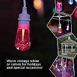 Enbrighten 39511 Vintage Seasons LED Warm White