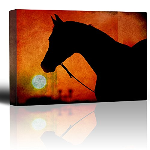 Horse Silhouette Orange Setting Sun Rustic