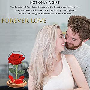 Beauty and The Beast Rose, Enchanted Red Silk Rose Lamp That Lasts Forever with LED, Fallen Petal in Glass Dome on Wooden Base, Best Gift for Holiday Birthday Party Wedding Anniversary Valentine's Day 6
