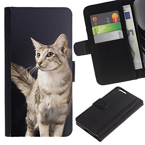 EuroCase - Apple Iphone 6 PLUS 5.5 - oriental longhair cat British American - Cuir PU Coverture Shell Armure Coque Coq Cas Etui Housse Case Cover