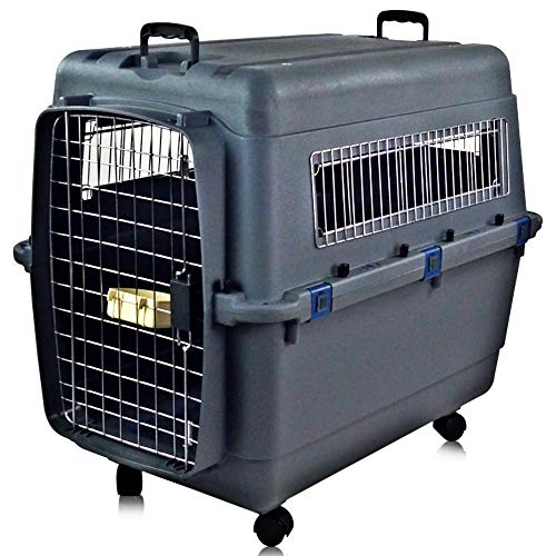 Bestselling Dog Hard Sided Carriers
