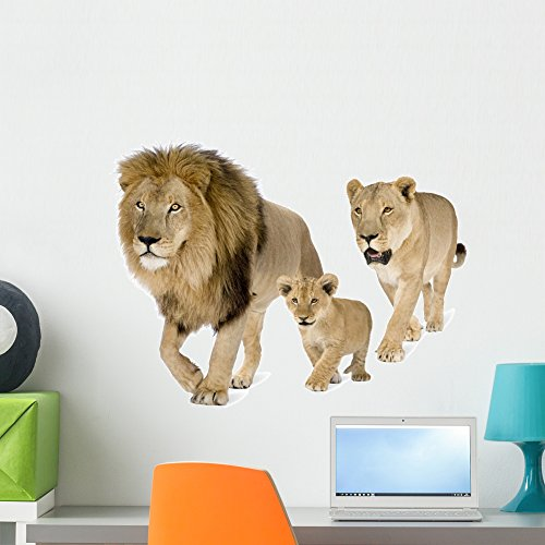Cheap  Wallmonkeys Lions Family Front White Wall Decal Peel and Stick Graphic (24..