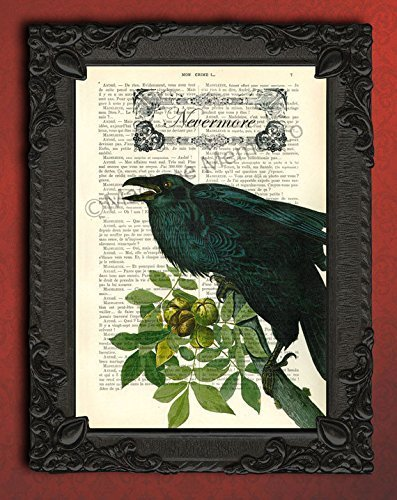 (Nevermore Poe artwork, victorian raven art print, black bird decorations poster, crow decor on dictionary page )